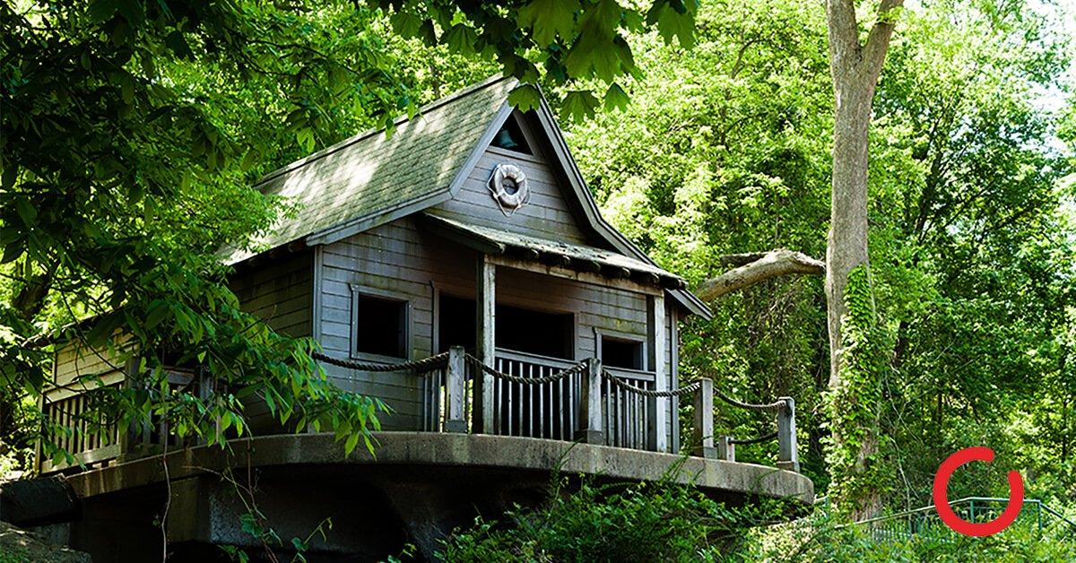 Proche de la nature dans une cabane placée dans un arbre